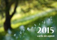 edizioni_calendario